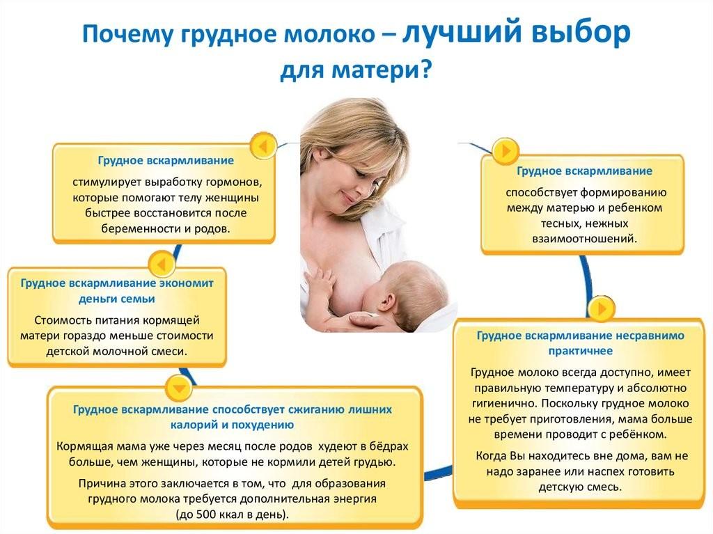 Восстановление лактации или 10 шагов на пути к успешному грудному вскармливанию после перерыва