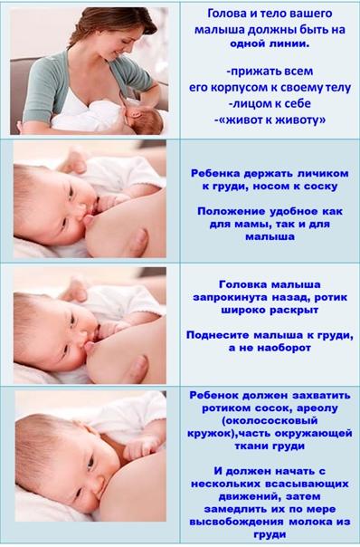 Как правильно прикладывать ребенка для кормления | азбука здоровья