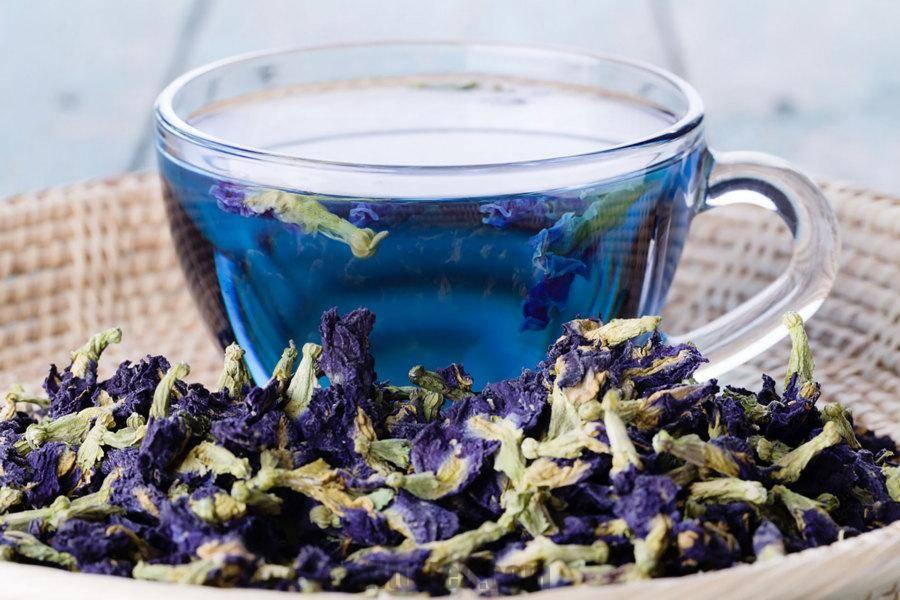 Пурпурный чай чанг-шу для похудения: состав, как принимать синий чай, инструкция, противопоказания / mama66.ru