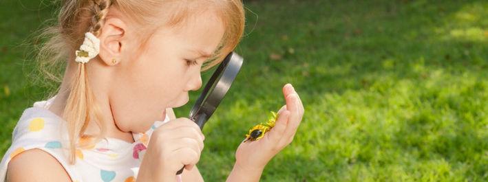 Энтомофобия. что делать, если ребенок боится насекомых?