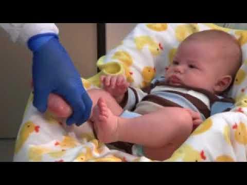 Токсоплазмоз: анализ крови, показания, причины, обследование
