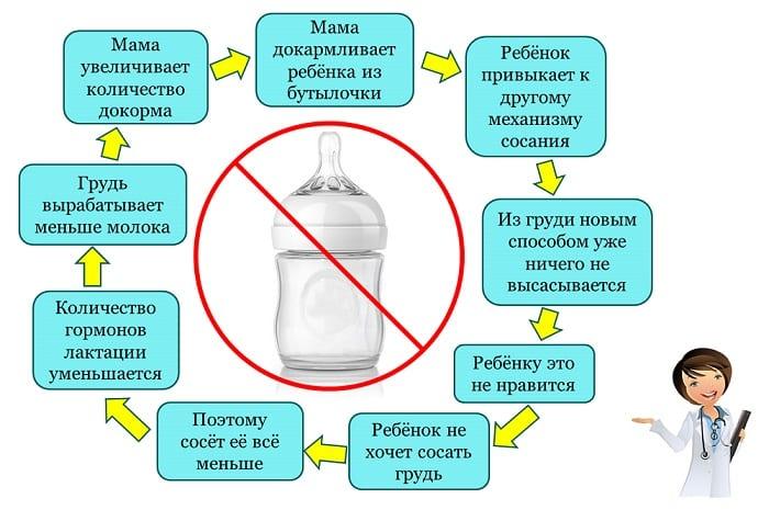 Что нужно есть, чтобы было много грудного молока, для увеличения выработки и лактации