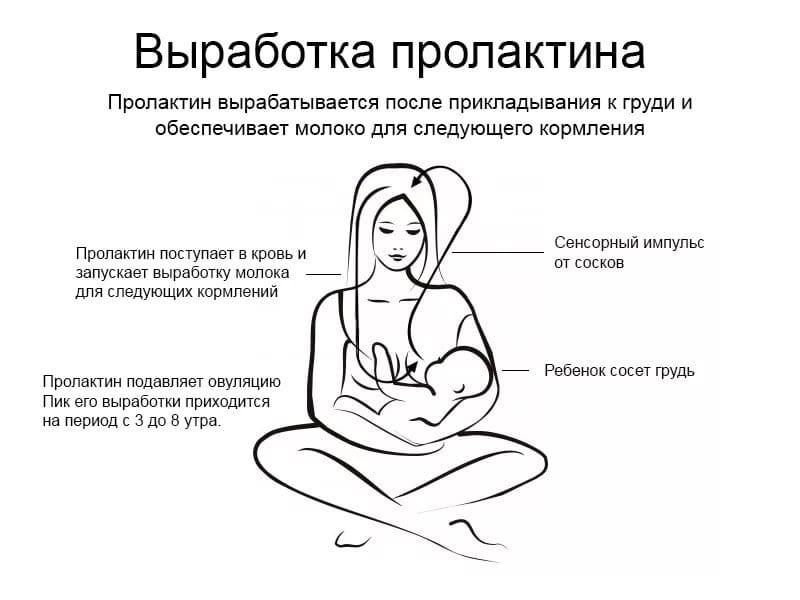 Как делать массаж груди при лактостазе?