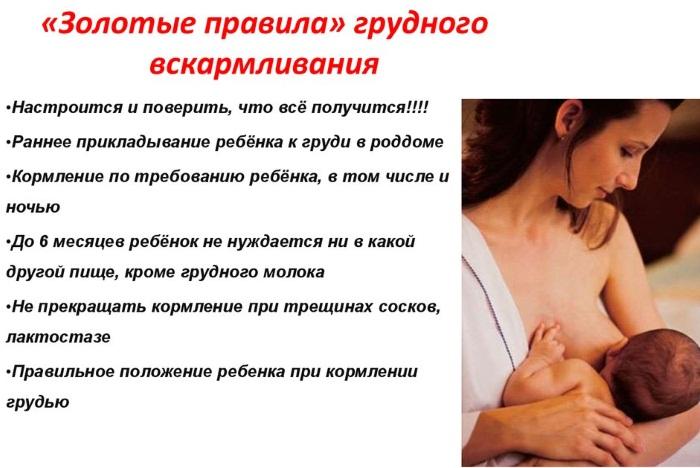 Первое прикладывание к груди | lovi