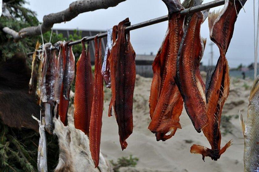 Можно ли вяленую рыбу при грудном вскармливании