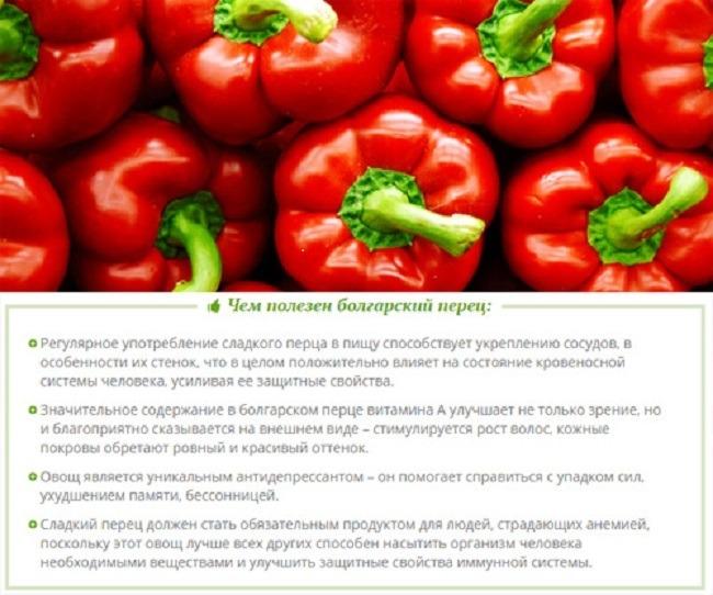 Чем полезен болгарский перец при беременности