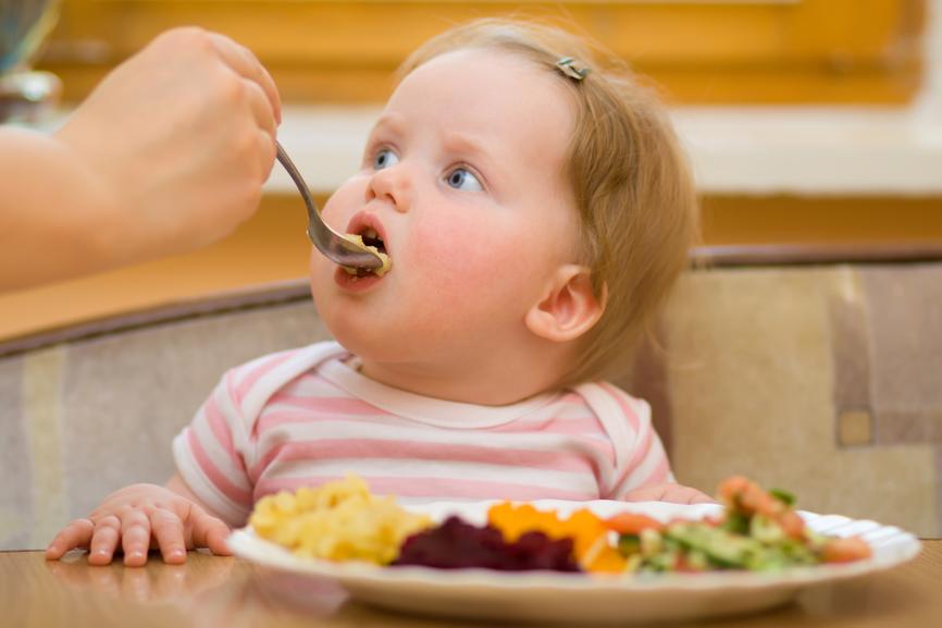Blw-прикорм – что такое самоприкорм и с чем его едят
