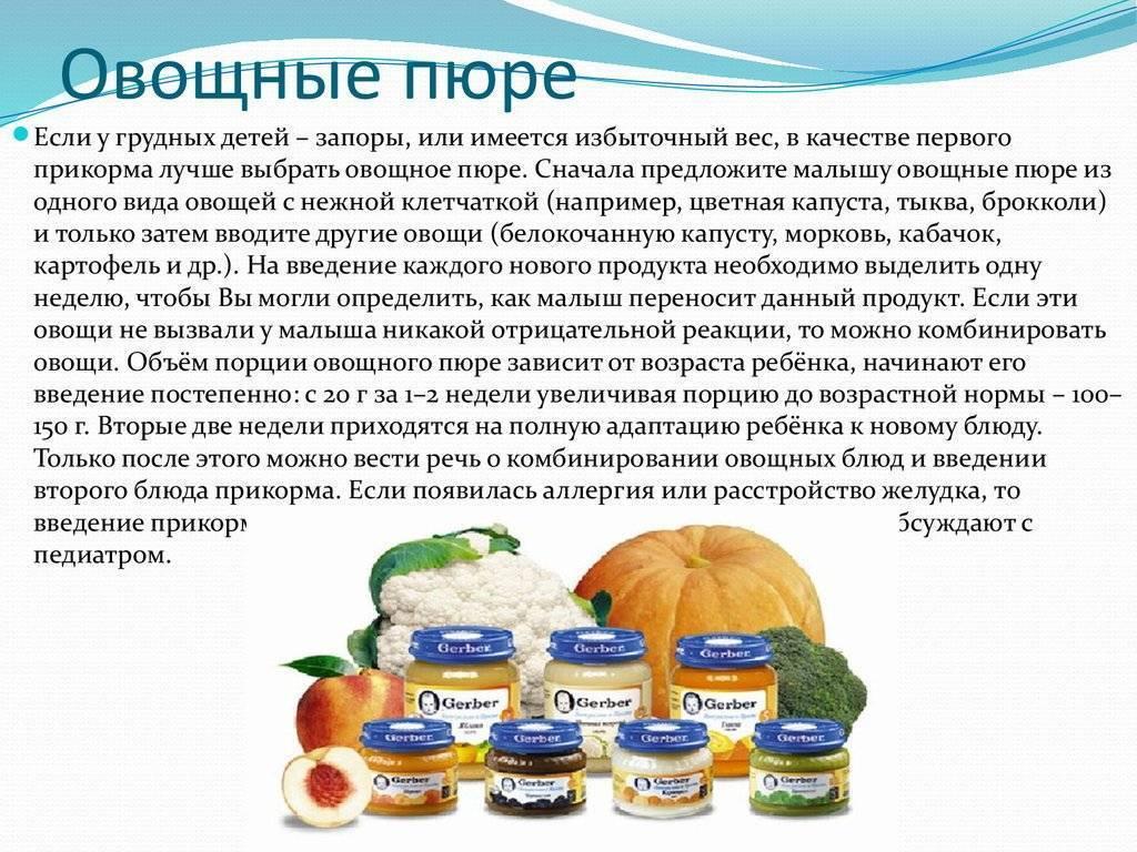 С каких овощей начинать прикорм: какое пюре лучше для грудничка, как вводить