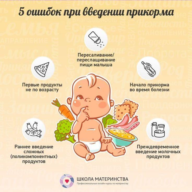 Как начинать первый прикорм при грудном вскармливании, схема с 4-х месяцев