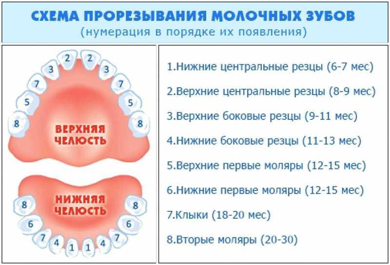 Почему не растут молочные зубы у ребенка? выпал зуб, новый не растет.