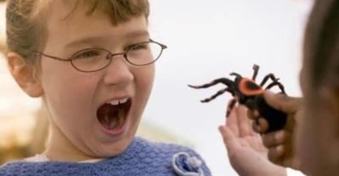 Ребенок боится насекомых до истерики: в чем причина и что делать