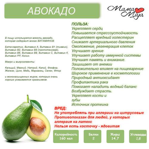 Авокадо при грудном вскармливании: можно ли кормящей маме в первый месяц и другие особенности употребления при лактации