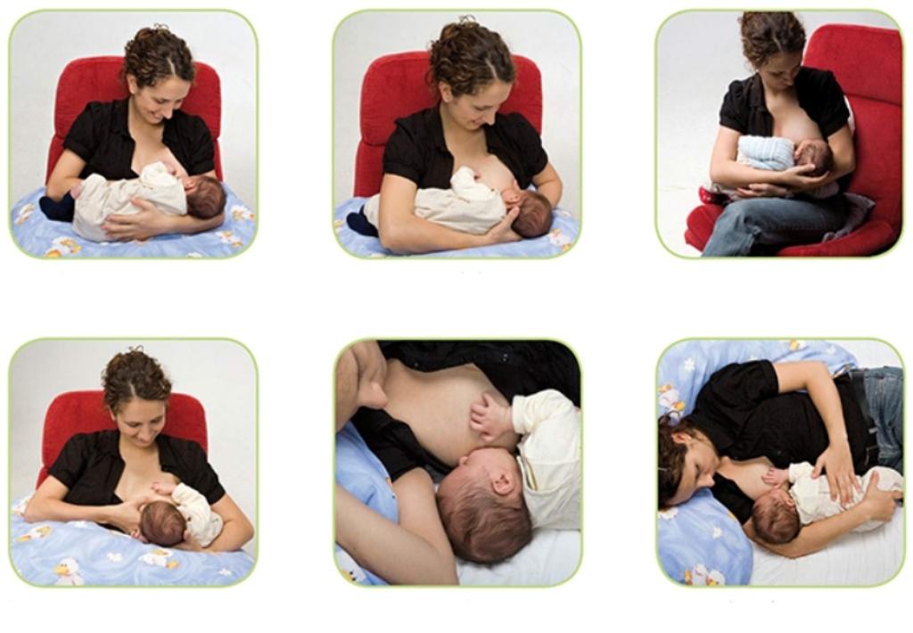 Как правильно прикладывать ребенка к большой и маленькой груди в первый раз и при последующих кормлениях: правильное положение новорожденного ребенка при кормлении грудью с фото и видео инструкциями