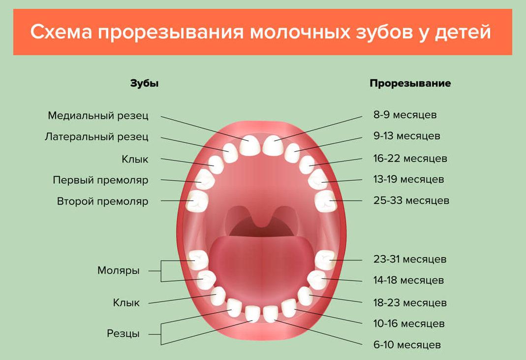 Аномалии зубов   аномалии положения, числа, формы и размера зубов