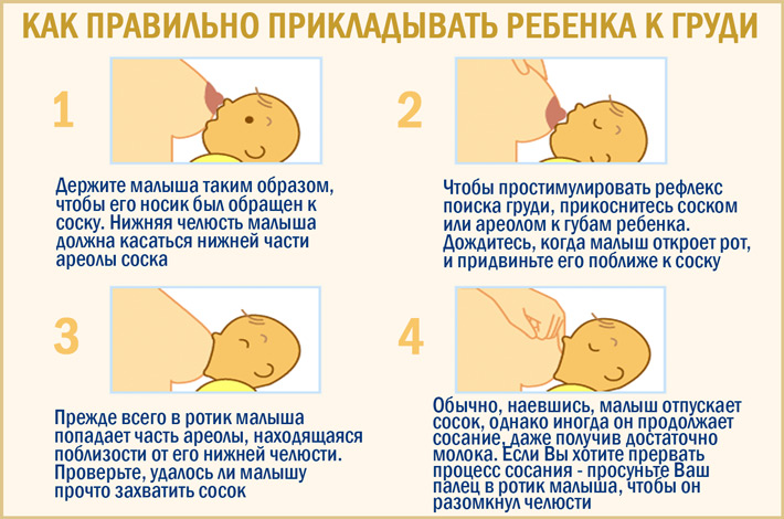Как правильно прикладывать к груди ребенка: организация гв