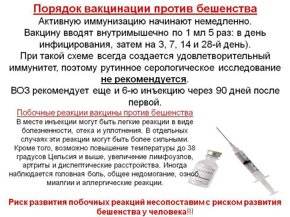 "Прививки. подробный рассказ обо всех ""за"" и ""против"" вакцинации."