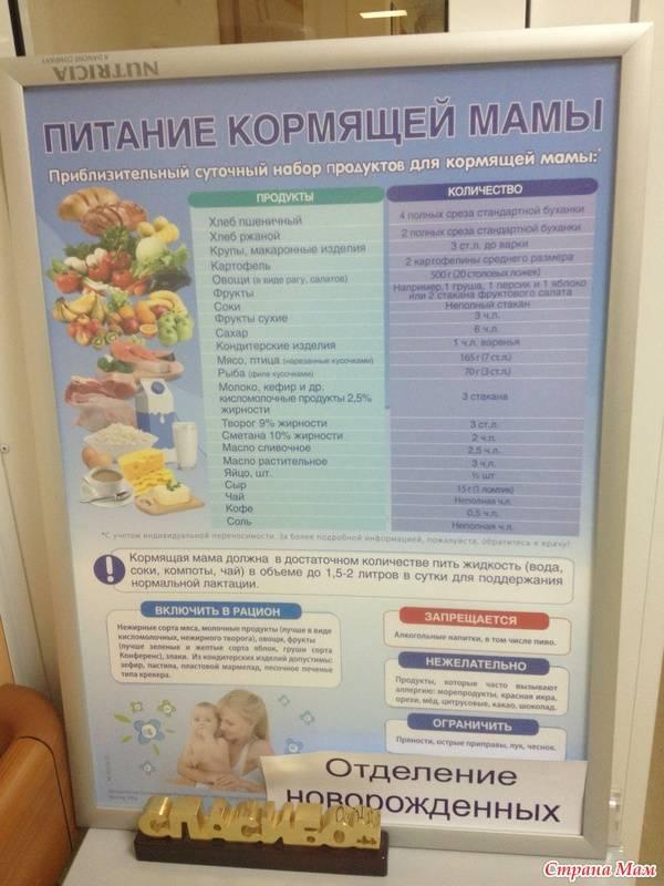 Питание кормящей мамы – мнение доктора Комаровского