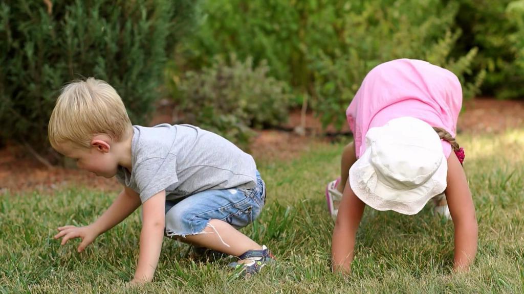 Энтомофобия. что делать, если ребенок боится насекомых? - дети в безопасности