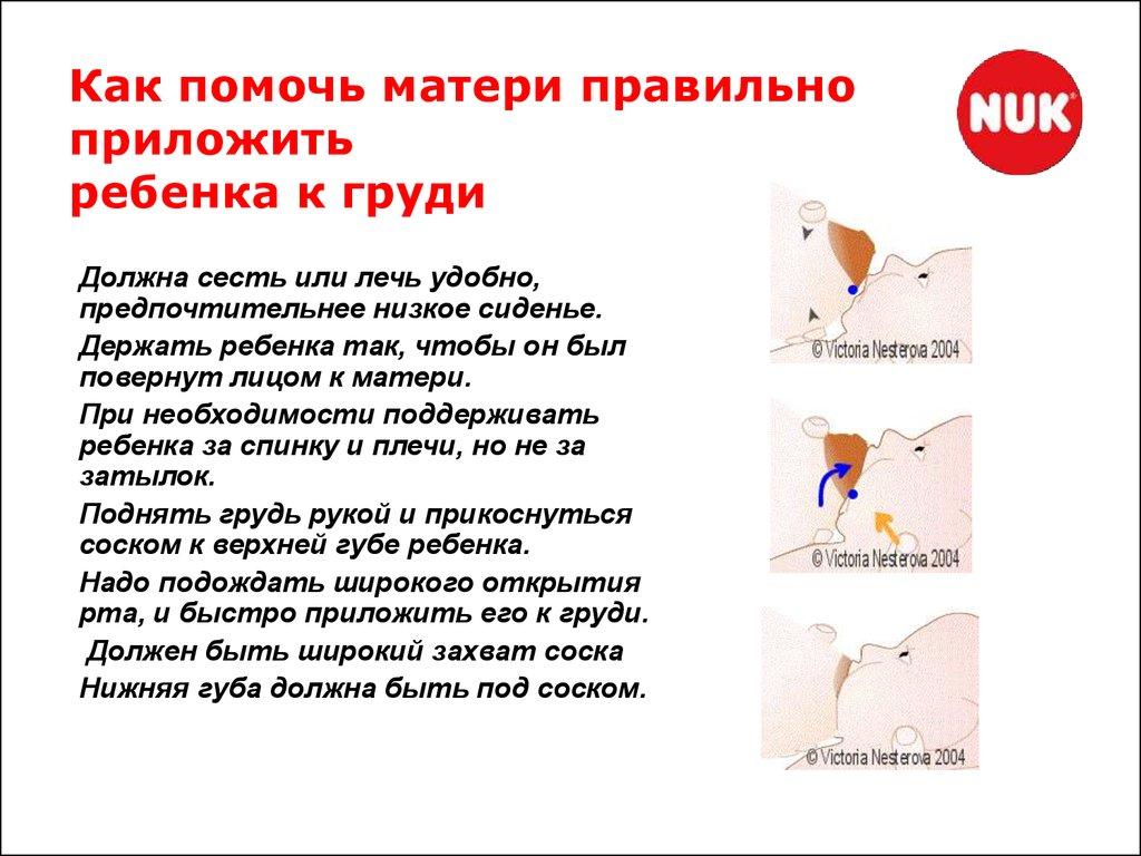 Как часто прикладывать ребенка к груди?   детская городская поликлиника № 32