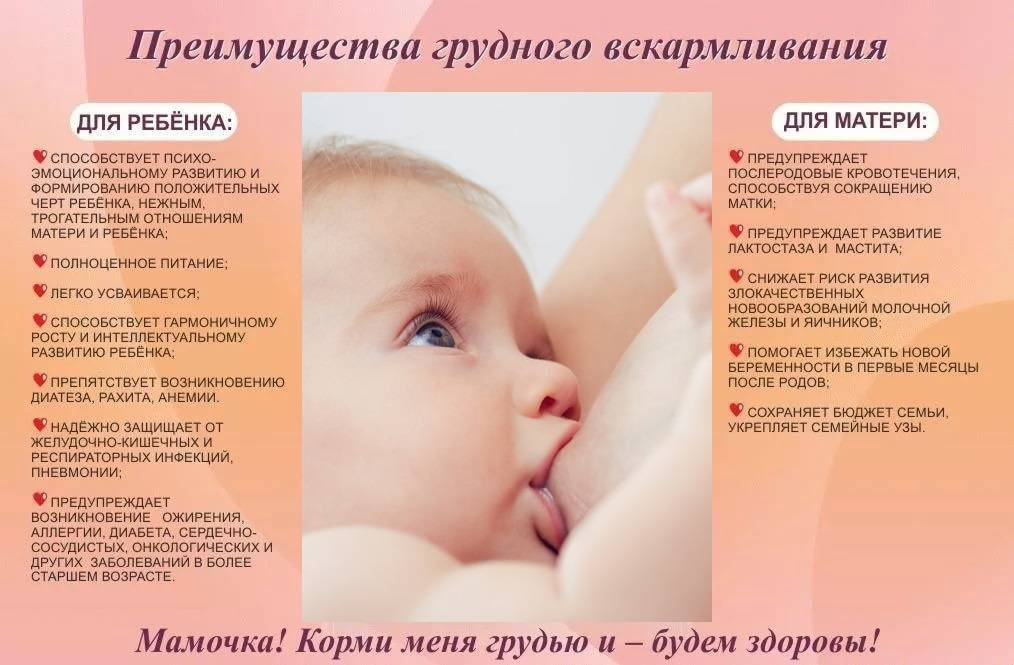 Основы грудного вскармливания. пособие для будущих мам.