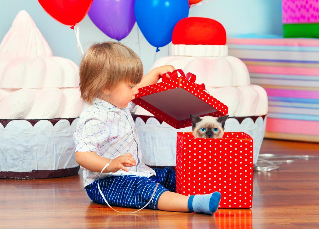 Подарок ребенку на 1 год: что подарить малышу?