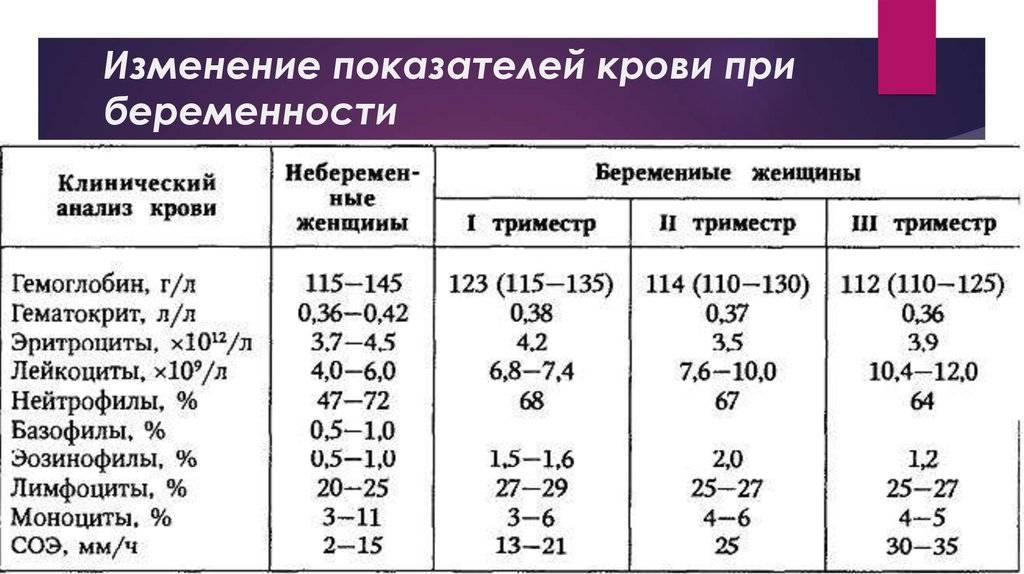 Норма соэ при беременности в 1, 2, 3 триместре (таблица) - kardiobit.ru