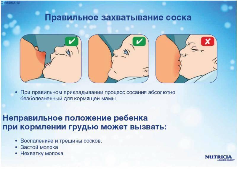 Как правильно приложить ребенка к груди?