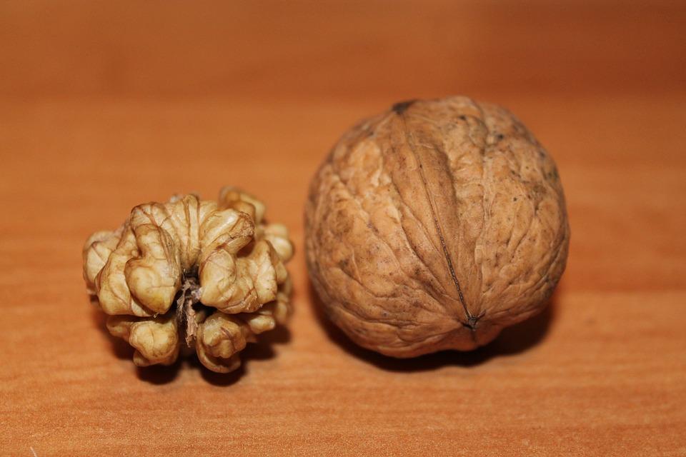 Грецкие орехи при беременности на 1, 2 и 3 триместре