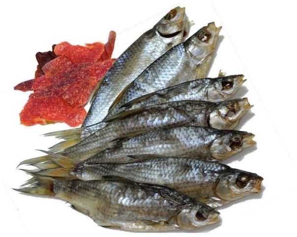 Красная рыба при беременности на ранних и поздних сроках