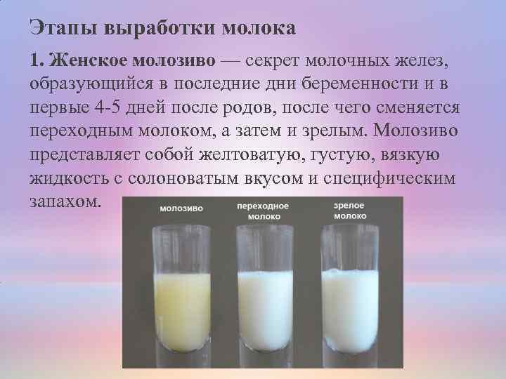 Молочные продукты для беременных