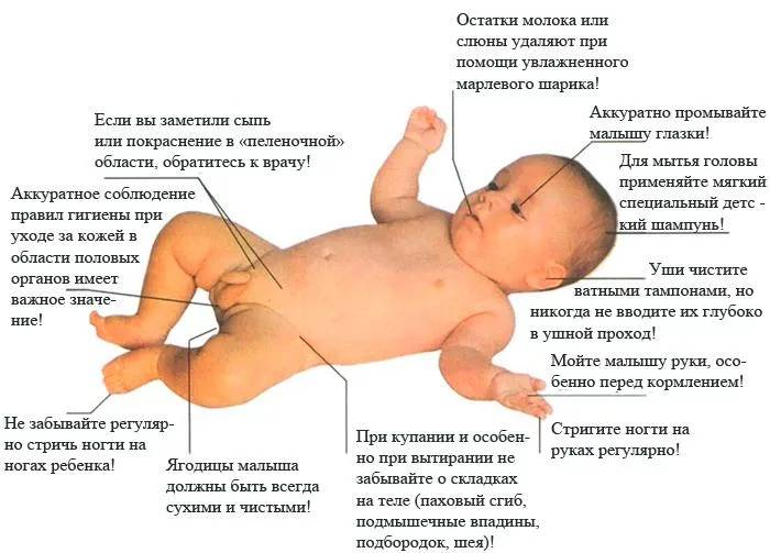 9 советов педиатра, как подмывать новорождённого мальчика