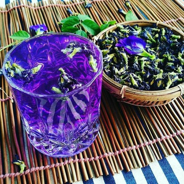 Пурпурный чай чанг шу - как заваривать, полезные свойства