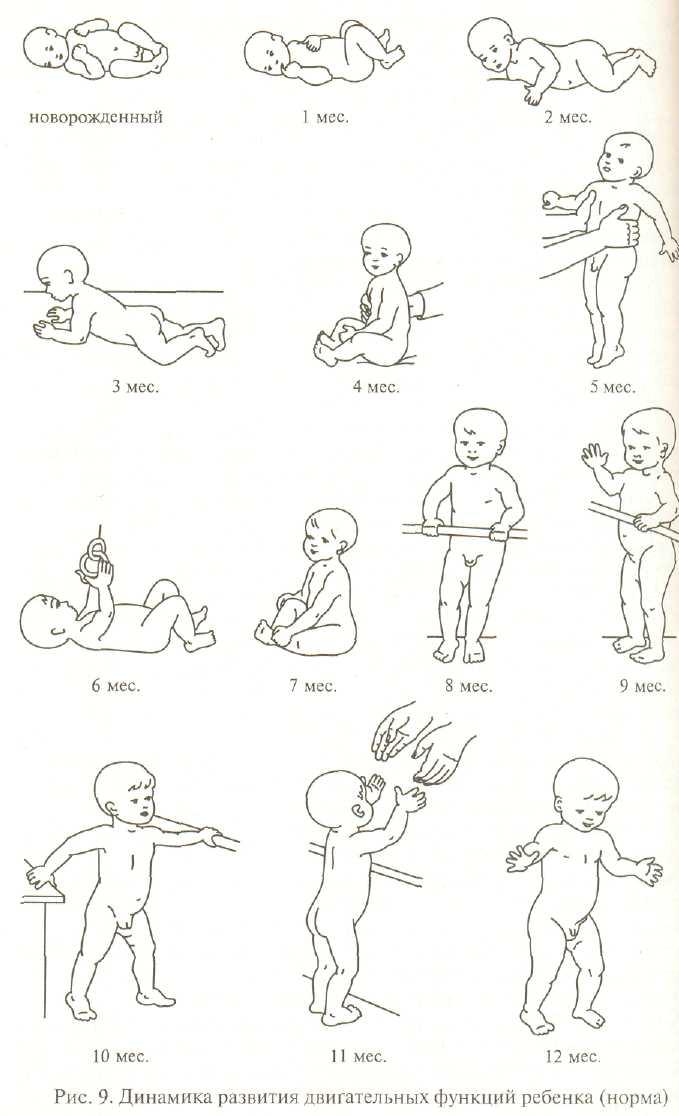Как ребенка научить держать головку: развитие по месяцам, советы