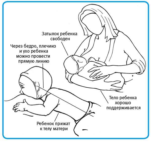 Как брать новорождённого на руки: правильный метод, видео и фото