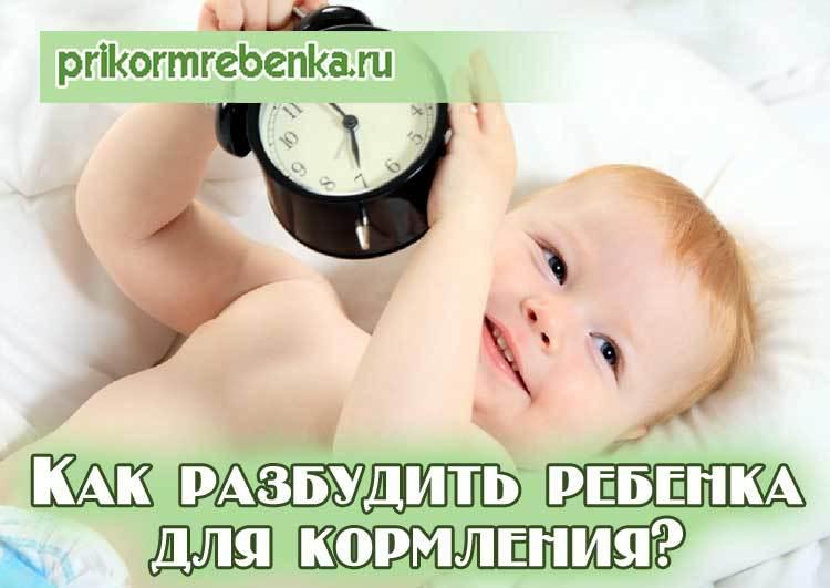 Подскажите, стоит ли будить ребёнка для кормления, если спит более трёх часов? ~ я happy mama