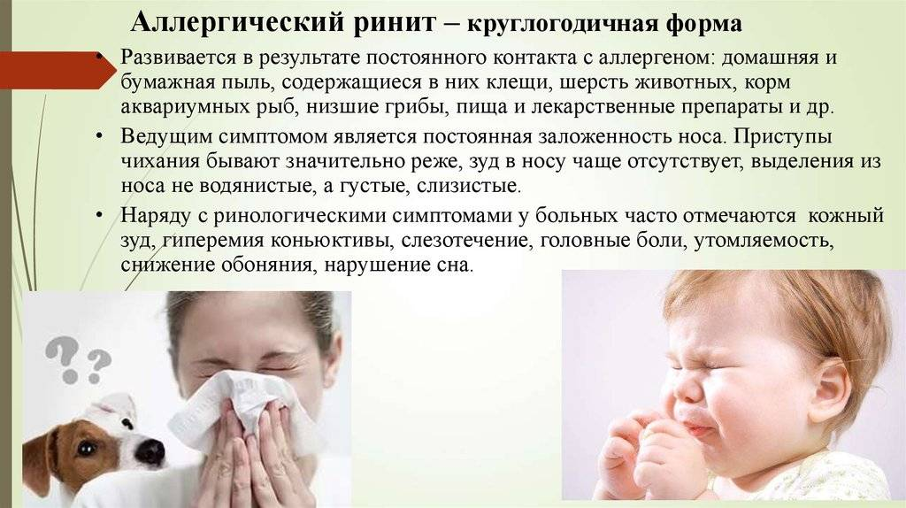 Аллергический ринит: как распознать и успешно вылечить заболевание?