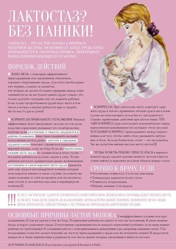 Застой молока (лактостаз) у кормящей мамы: что делать?