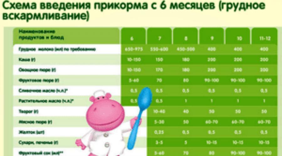 Как вводить прикорм ребенку в 5 месяцев: пошаговое описание