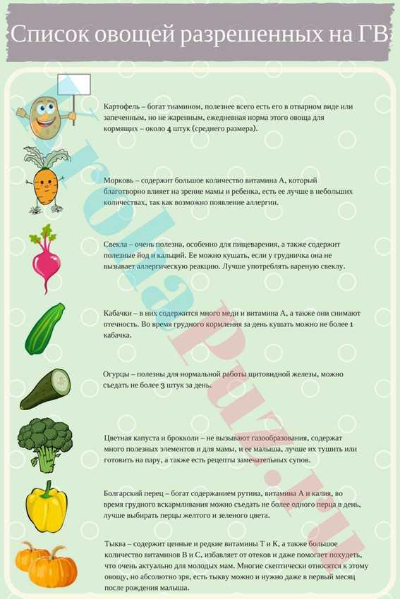 Какие овощи можно кормящей маме: список свежих и тушеных овощей