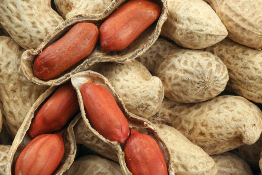 Можно ли употреблять в пищу арахис кормящей маме?