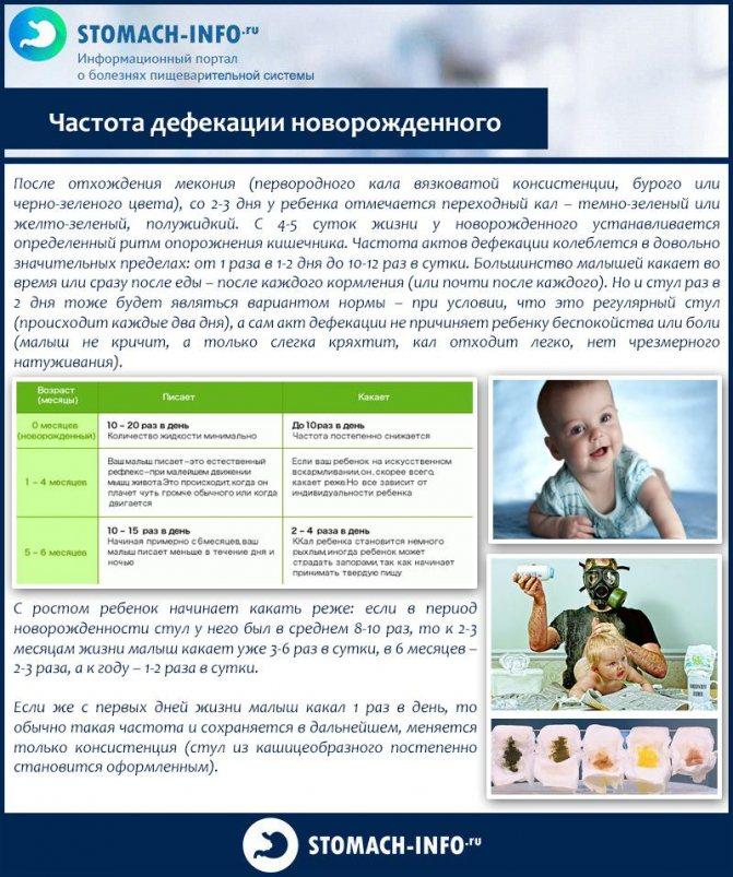 Здоровье с доктором комаровским: пять способов облегчить жизнь малышу при запорах » новости ижевска и удмуртии, новости россии и мира – на сайте ижлайф все актуальные новости за сегодня