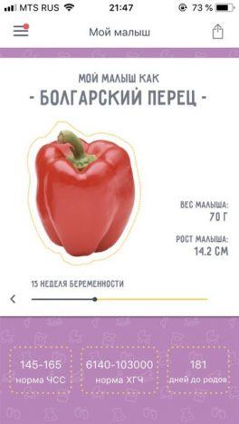 Болгарский перец при беременности: поддержим витаминный баланс!