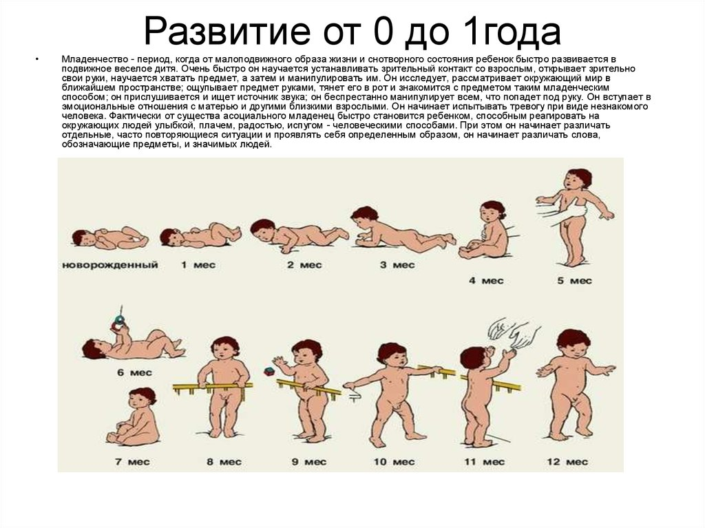 Ребенку 8 месяцев: что важно знать о развитии малыша и что делать