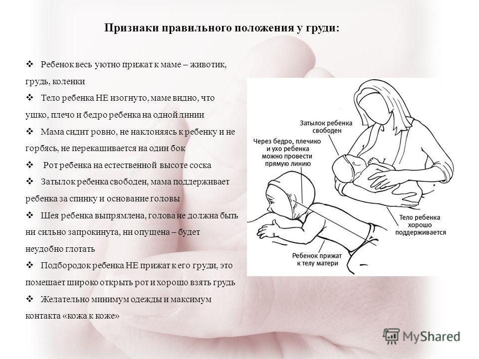 Правильное прикладывание ребенка к груди при гв