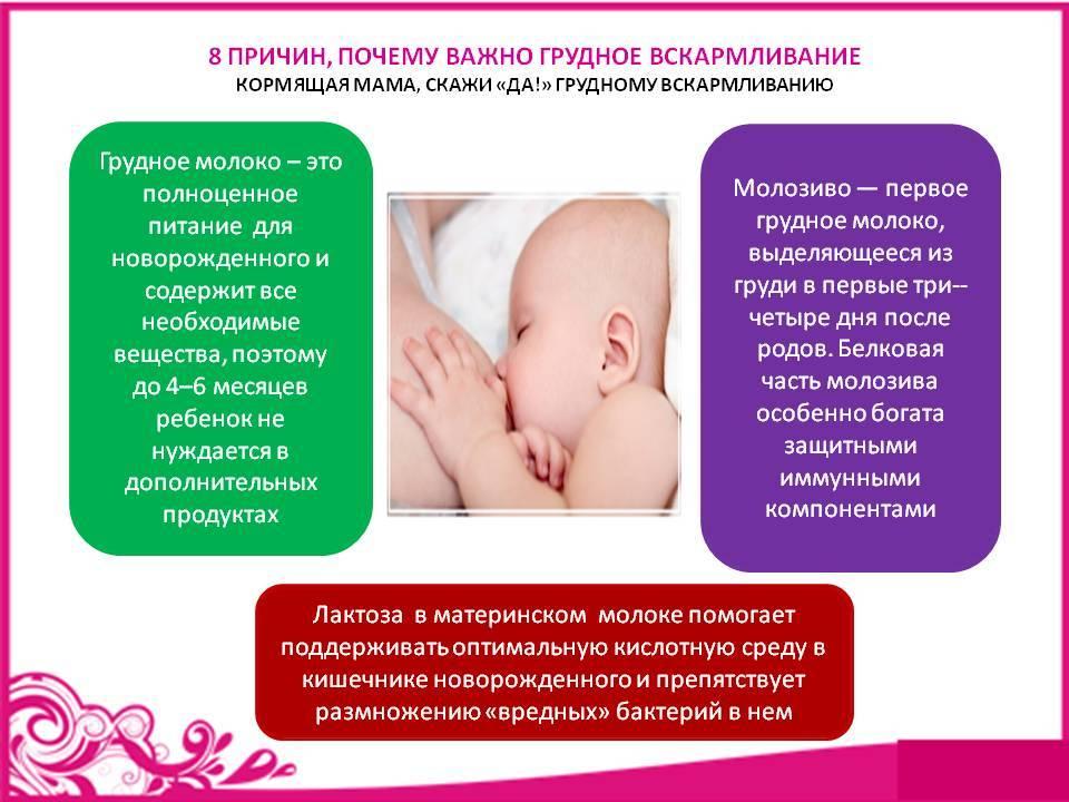 Идеальная няня для грудничка: основные требования, правила выбора и обязанности домашнего воспитателя