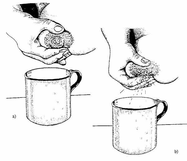 Массаж груди при лактостазе, как правильно массировать грудь кормящей маме, инструкции с фото и видео