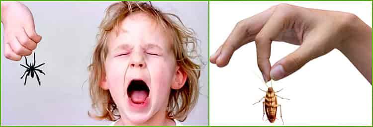 Лайфхак: как научить ребенка не бояться насекомых
