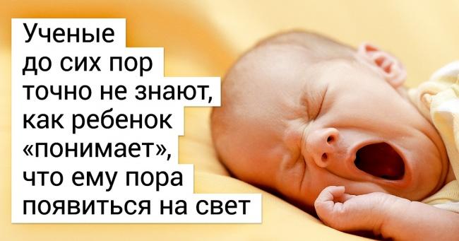 О многих беременностях женщины даже не знают! удивительные факты о зарождении жизни (часть 1)