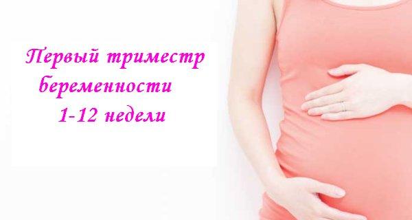 Второй и третий триместры: инструкция для будущей мамы - parents.ru