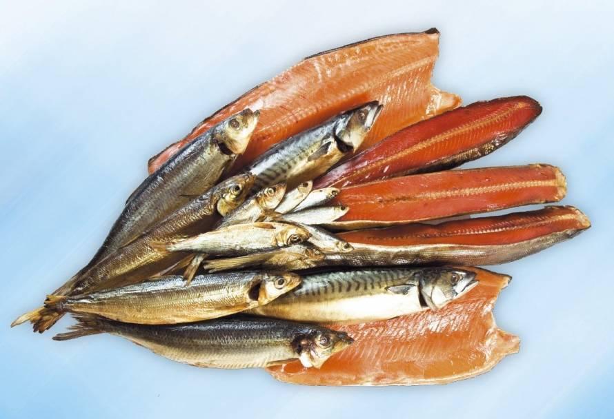 Можно ли красную рыбу при грудном вскармливании: польза и вред